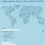 global_report